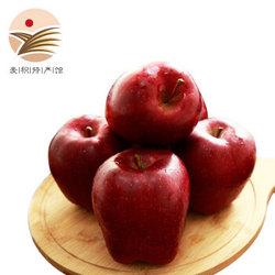 伍食家 甘肃天水花牛苹果 中大果 9斤